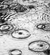 sourav_roy_monsoon